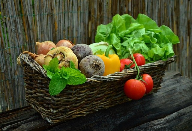 Alimentazione bio ipocalorica e integratori